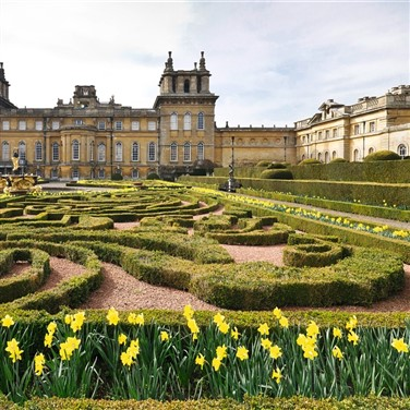 Blenheim Palace Afternoon Tea & Oxford