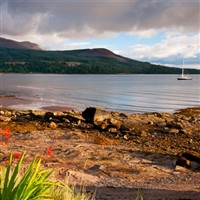Arran, Gigha & Scottish Gardens