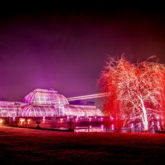 Kew Gardens Chhristmas Festive Light Trail