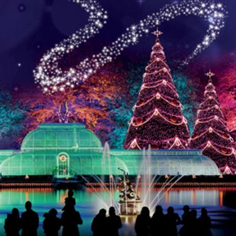Kew Christmas Lights & London