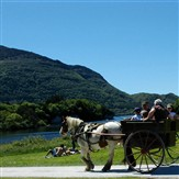 Killarney & The Ring of Kerry (Brehon Hotel)