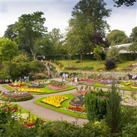 Shrewsbury Flower Show Day Excursion