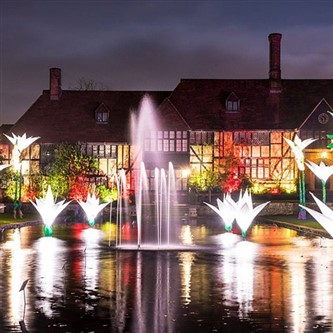 Glow at Wisley Gardens & Windsor Castle