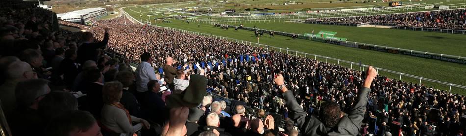 Cheltenham Races - Behind the Scenes