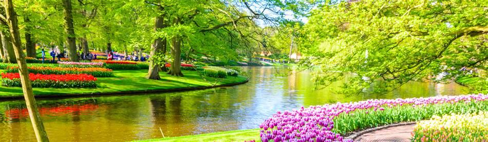 Dutch Bulbfields, Scheveningen & Amsterdam