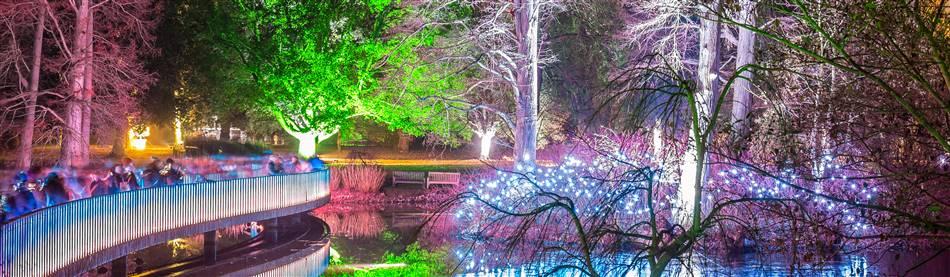 Kew Gardens Chhristmas Festive Light Trail