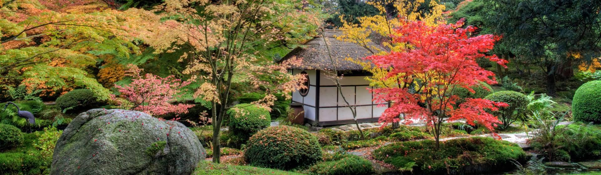 The Japanese Garden at Tatton Park Estate & Gardens in Cheshire