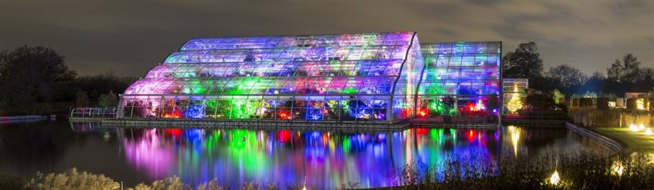 Glow at Wisley Gardens & Windsor