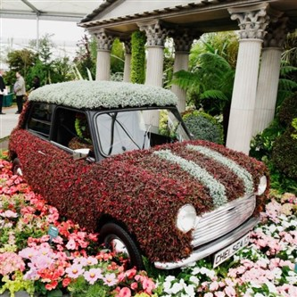 Flower Shows & Gardens